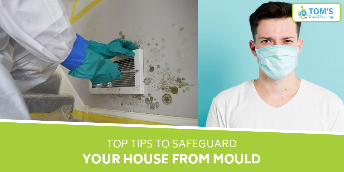 Top Tips to Safeguard Your House from Mould